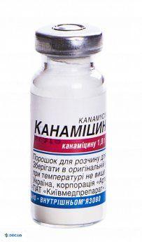 Канамицин порошок для раствора для инъекций 1 г флакон, №1 КМП