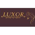 Клиника - Luxor, центр красоты и здоровья. Онлайн запись в клинику на сайте Doc.ua (044) 337-07-07