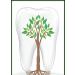 Клиника - Стоматология. Онлайн запись в клинику на сайте Doc.ua 38 (032) 247-05-05