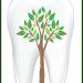 Клиника - Стоматологія. Онлайн запись в клинику на сайте Doc.ua (032) 253-07-07