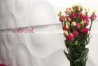 Ermetov Clinic. Онлайн запись в клинику на сайте Doc.ua (044) 337-07-07