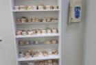 «Dental Studio» (Дентал Студио). Онлайн запись в клинику на сайте Doc.ua (044) 337-07-07