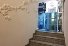 Частная медицинская практика врача-диетолога «Дерево жизни нации». Онлайн запись в клинику на сайте Doc.ua (044) 337-07-07